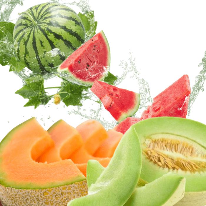 Melon Paradise e juice